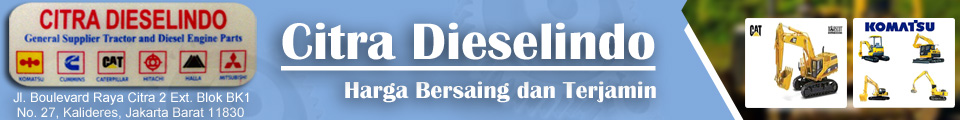 Citra Dieselindo